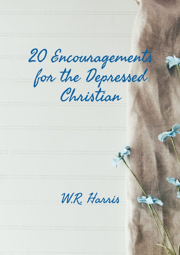 20 Encouragements  for the Depressed Christian Book Cover