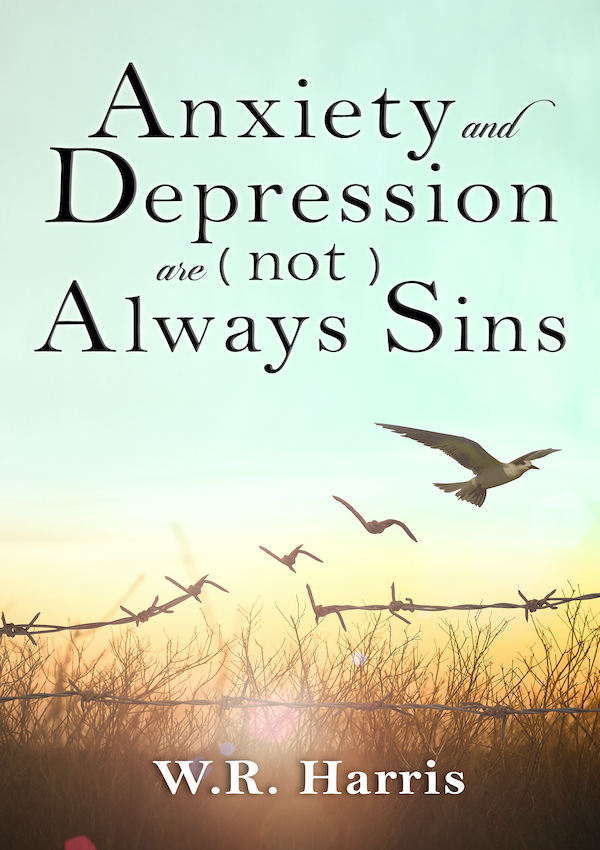 Anxiety Depression is Not Always Sin Book Cover